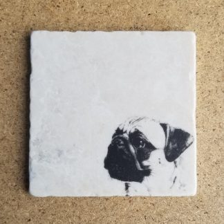 image of Pug Coaster