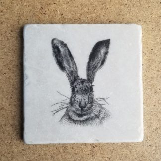 image of Hare Coaster