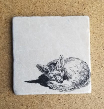 image of a fox coaster