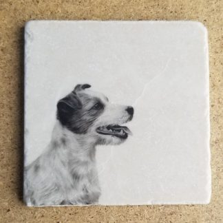 image of jack Russel coaster