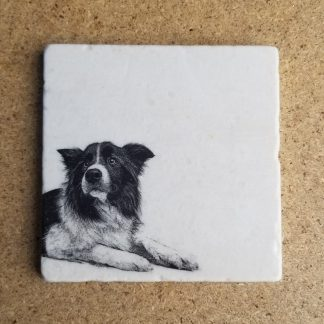 image of sheepdog coaster