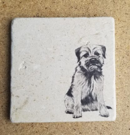 image of border terrier coaster